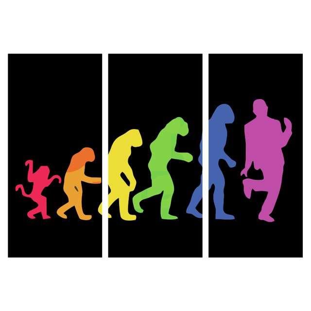 Quadro evoluçao LGBT decorativo