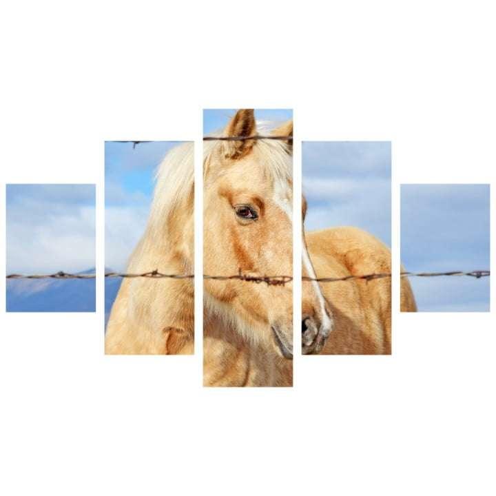 Quadro Cavalo Olhar Cerca Decorativo