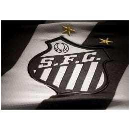 Quadro Para Decorar Santos Futebol Clube