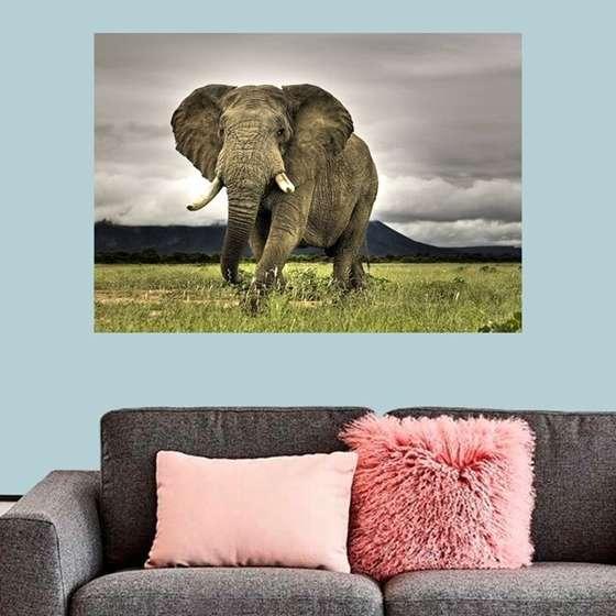 Quadro elefante selva