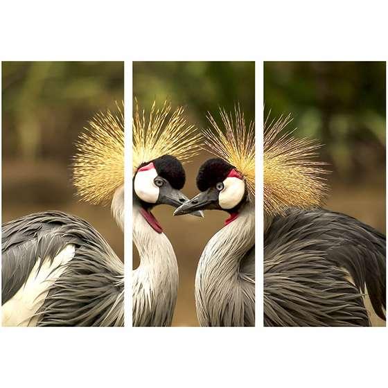 Quadro aves selvagem natureza decorativo