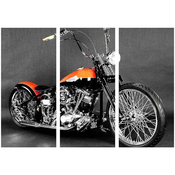 Quadro Moto Harley Davidson Para Sua Casa