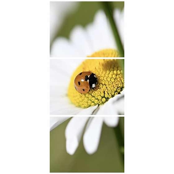 Quadro flor branca joaninha decorativo