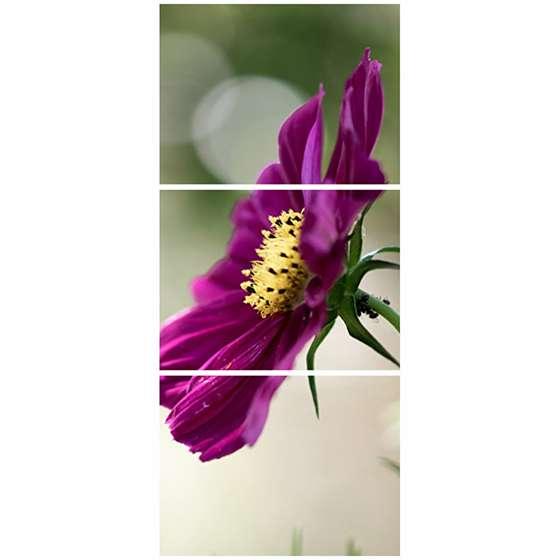 Quadro flor roxa petalas delicadas decorativo