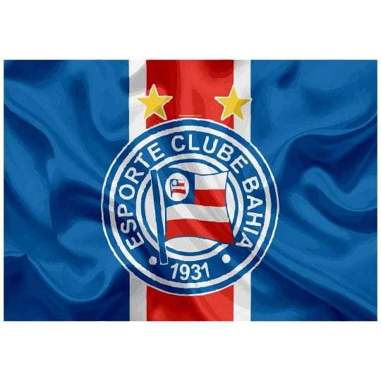 Quadro para Decoração Esporte Clube Bahia
