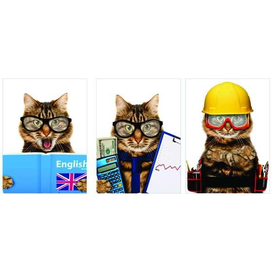 Quadros Gatos Profissoes Pets decorativos 3 unidades