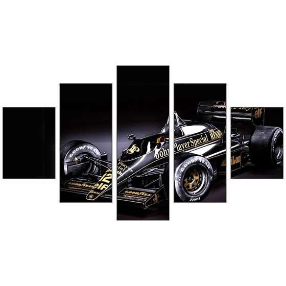 Quadro Lotus Sports Formula 1 Piloto brasileiro